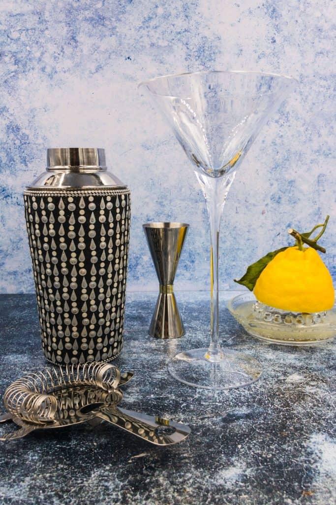 Cocktail shaker, jigger, Hawthorne strainer and martini glass