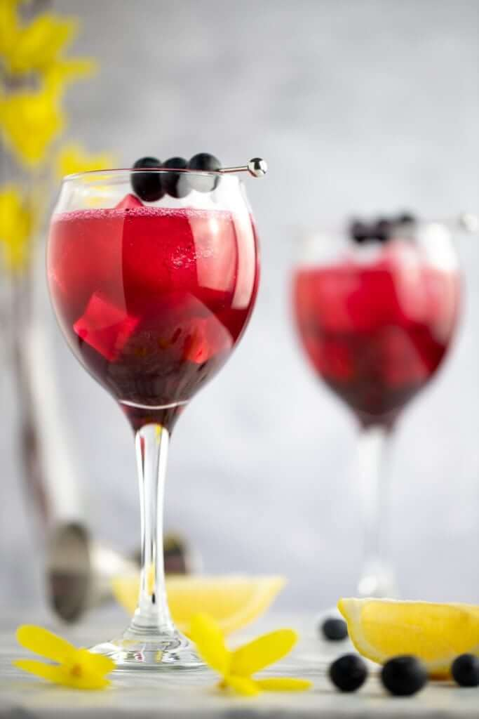Two triple sec, blueberry and gin cocktails with stylish blueberry garnish