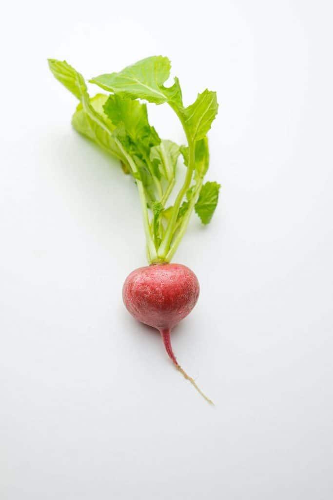A fresh radish.