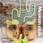 Homemade Mexican mule image for Pinterest.