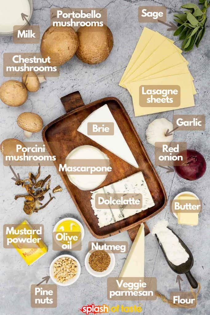 Ingredients needed for mushroom and four cheese lasagna, milk, Portobello mushrooms, sage, lasagna sheets, garlic, red onion, butter, flour, vegetarian parmesan, nutmeg, pine nuts, extra virgin olive oil, mustrd powder, porcini mushrooms, chestnut mushrooms, brie, mascarpone and dolcelatte.